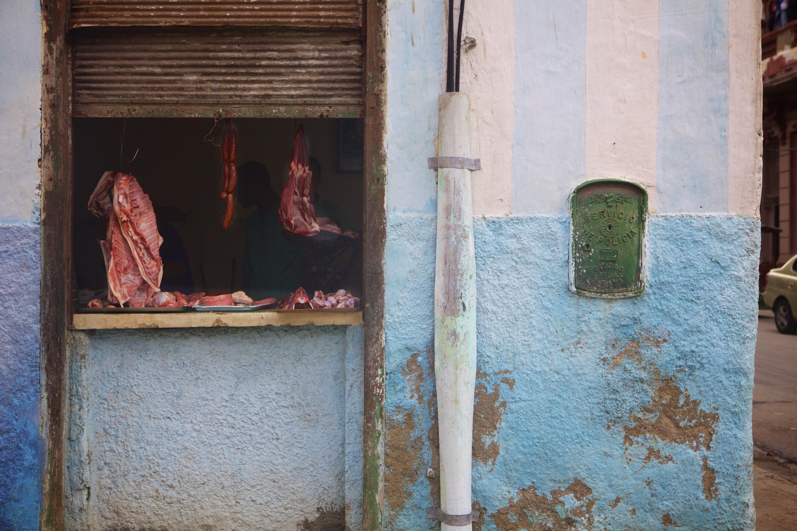 Blue & White Mercado Carne