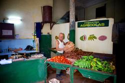 Productos Agricolos – Calle Crespo I