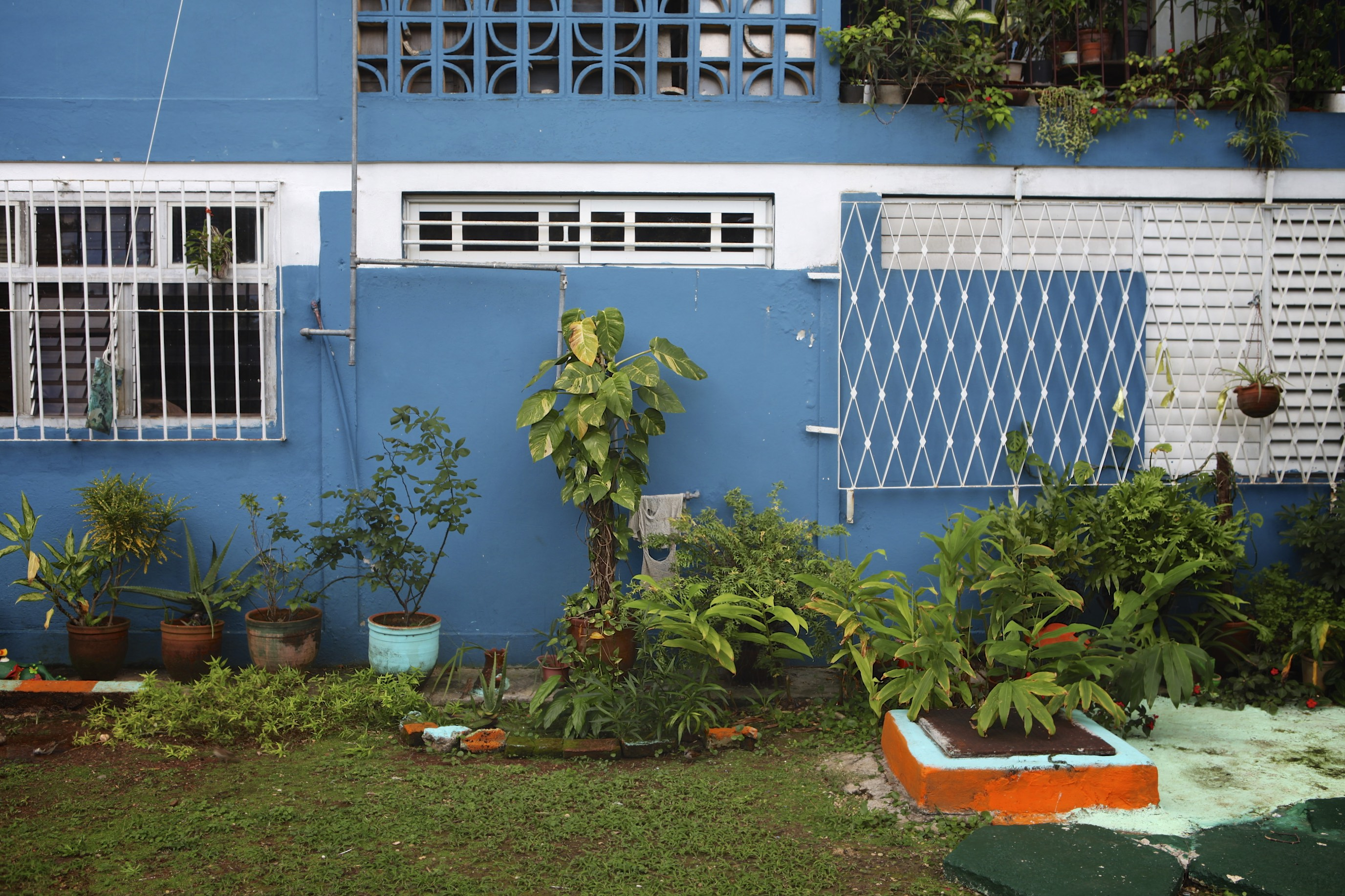 Garden: Eladio Cid