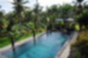 Ark Pool.jpg