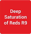 Gardler Spectra White Advantage Deep Saturation of Reds R9