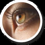 Gardler Lighting Human Centered Lighting HCLT Visual Performance Detection