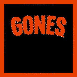 Logo DGES original.png