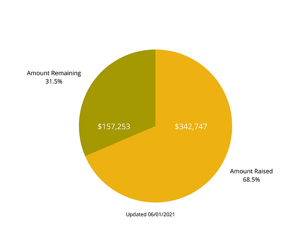 Endowment Graph for Website (9).png