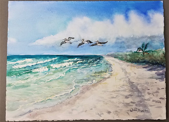 Linda Busse - 3 Pelicans and 1 Palm Tree