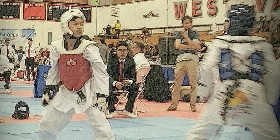 The Taekwondo Games