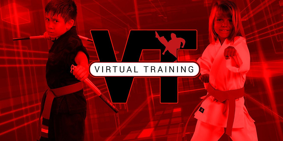 Virtual Training, 'PinStream'