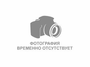 Никишова Татьяна