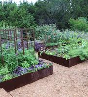 metal garden beds