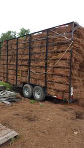 pine straw Newnan, Ga.jpg