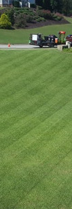 Elite Lawns