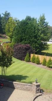 Elite Lawn Care, Newnan, Georgia