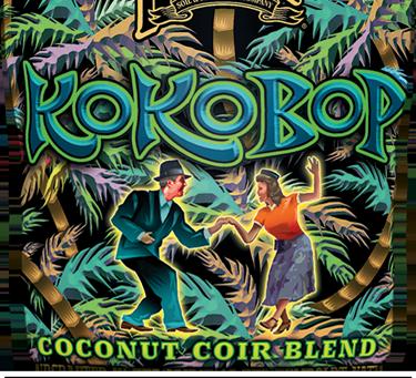 Ko Ko Bop Coconut