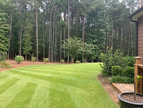 landscape & lawn care services Newnan