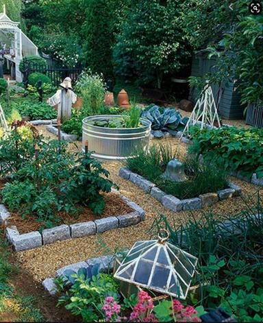 raised bed kitchen garden