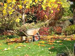 Fall Garden Maintenance: Autumn Garden Ideas And Tips