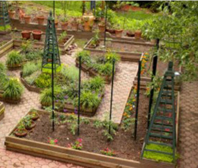 design garden beds