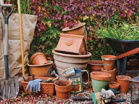Landscape – Fall Planting