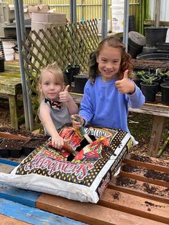 Southern Roots Nursery marigolds.jpg