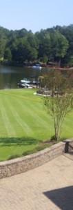 Elite Lawn Care