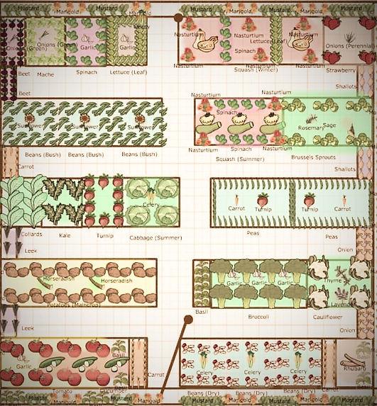 garden%20planning_edited.jpg