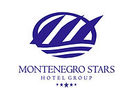 MN Stars logo.jpg