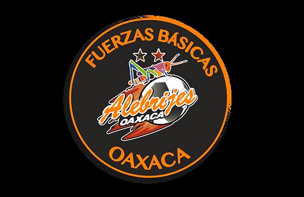 FuerzasBásicas-OAXACA-03.png