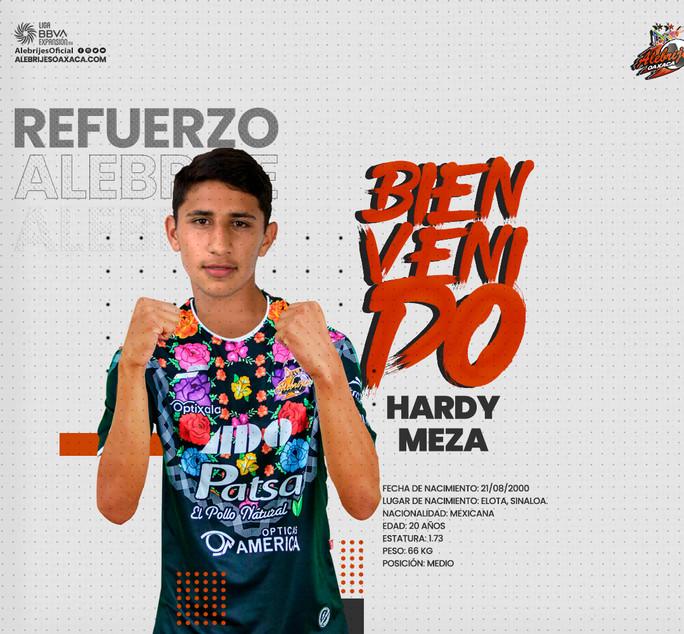 Hardy Meza