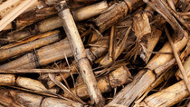 GEEN continues investments in biomass units in Croatia