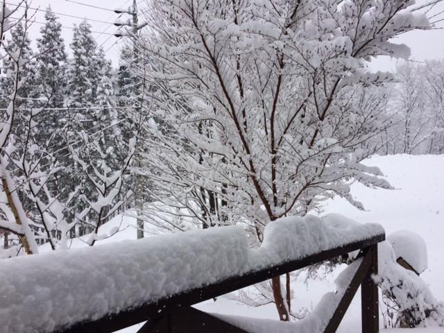 12月17日大雪