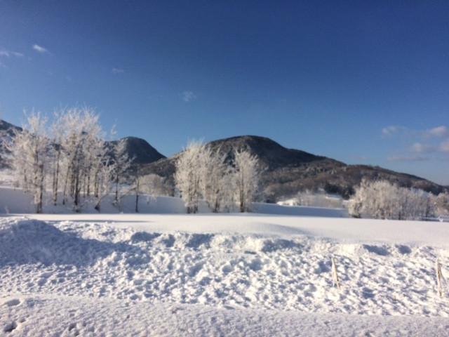 木島平の霧氷の景色