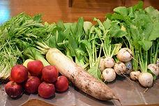農家さんからの地元新鮮野菜