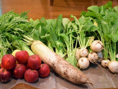 美味しい冬野菜