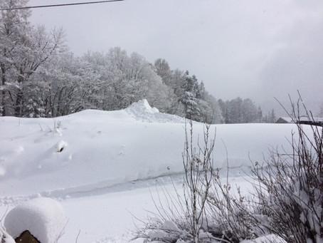 3月1日の寒波