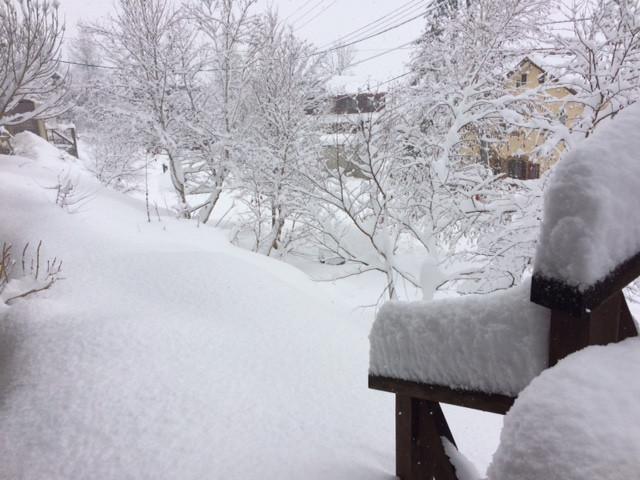 12月17日大雪なり