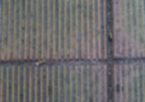 nest 3.jpg