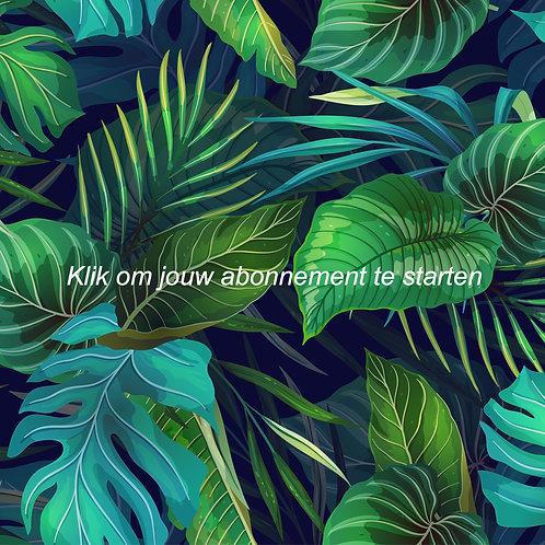 Jungle Abonnement