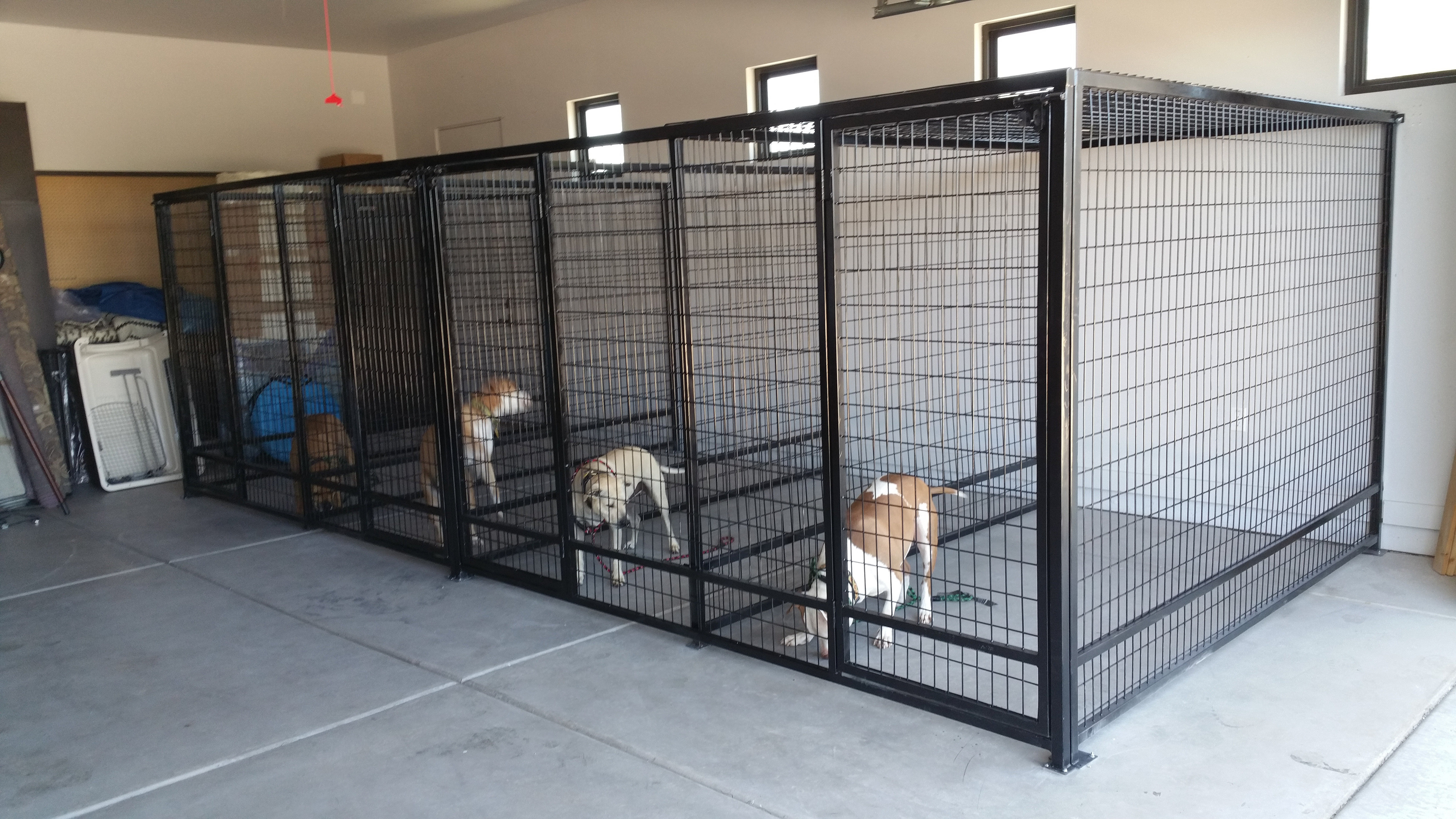 outdoor indoor kennels runs pens cages crates fencing for sale interior kennels