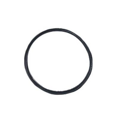 Filter Bowl O-Ring