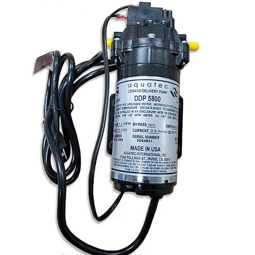 DEL.PUMP 60 PSI 1.2 GPM 120V
