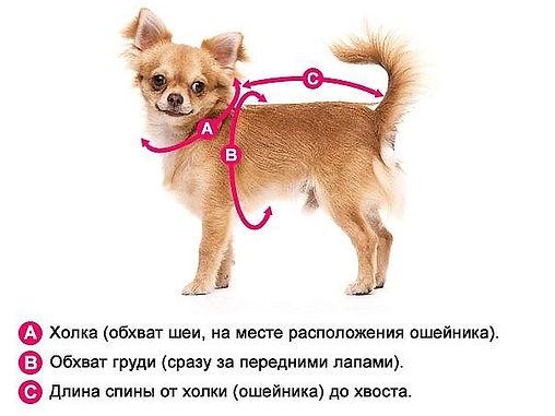 c9NHc4a_pnA.jpg