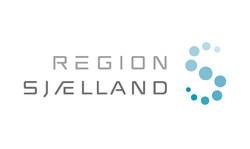 Region_Zealand_logo