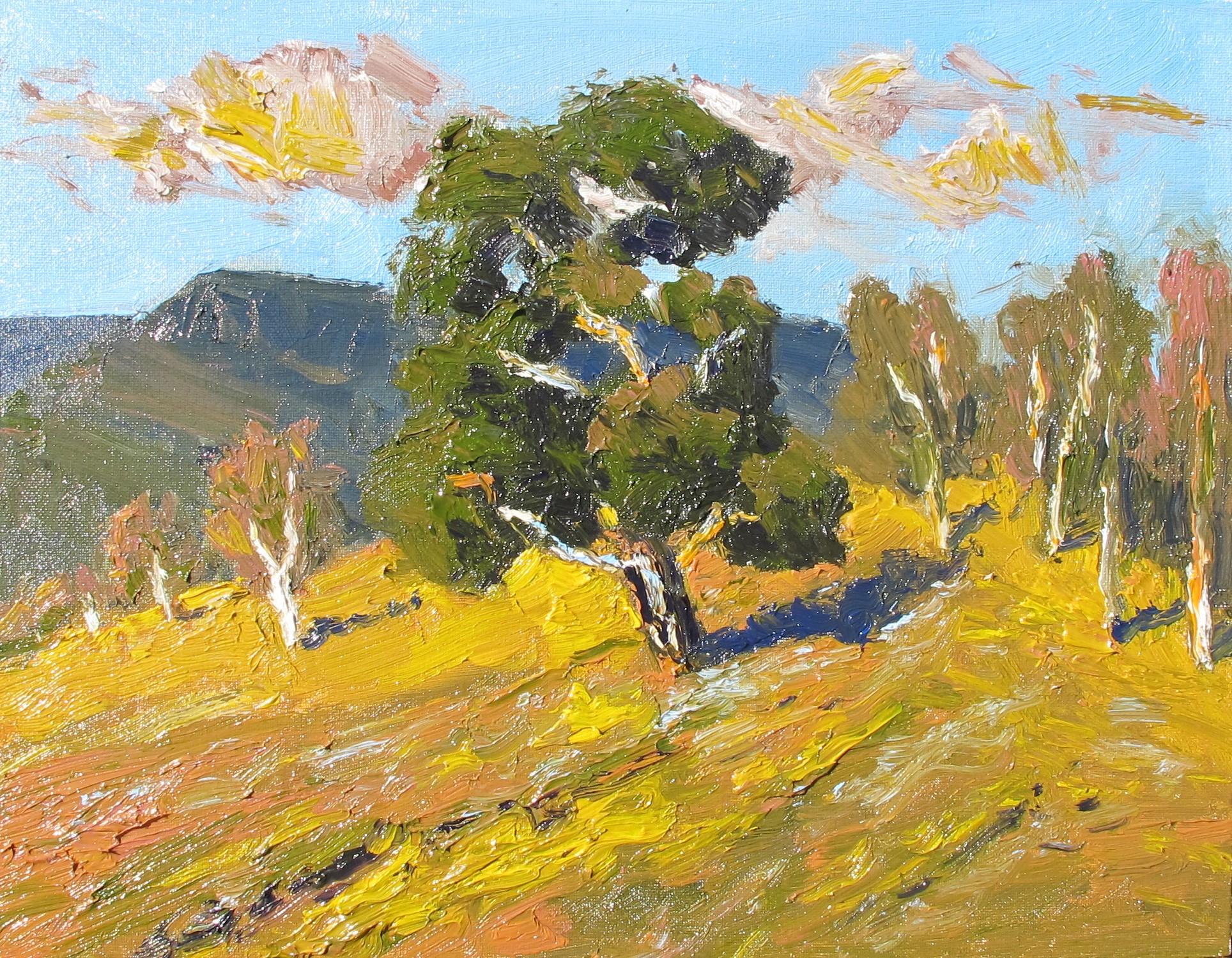Colour study, autumn effect
