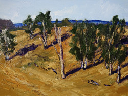 High Plateau, Megalong Valley