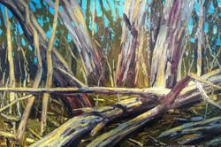Bushland & trees