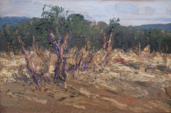 Small study, Hartley Vale