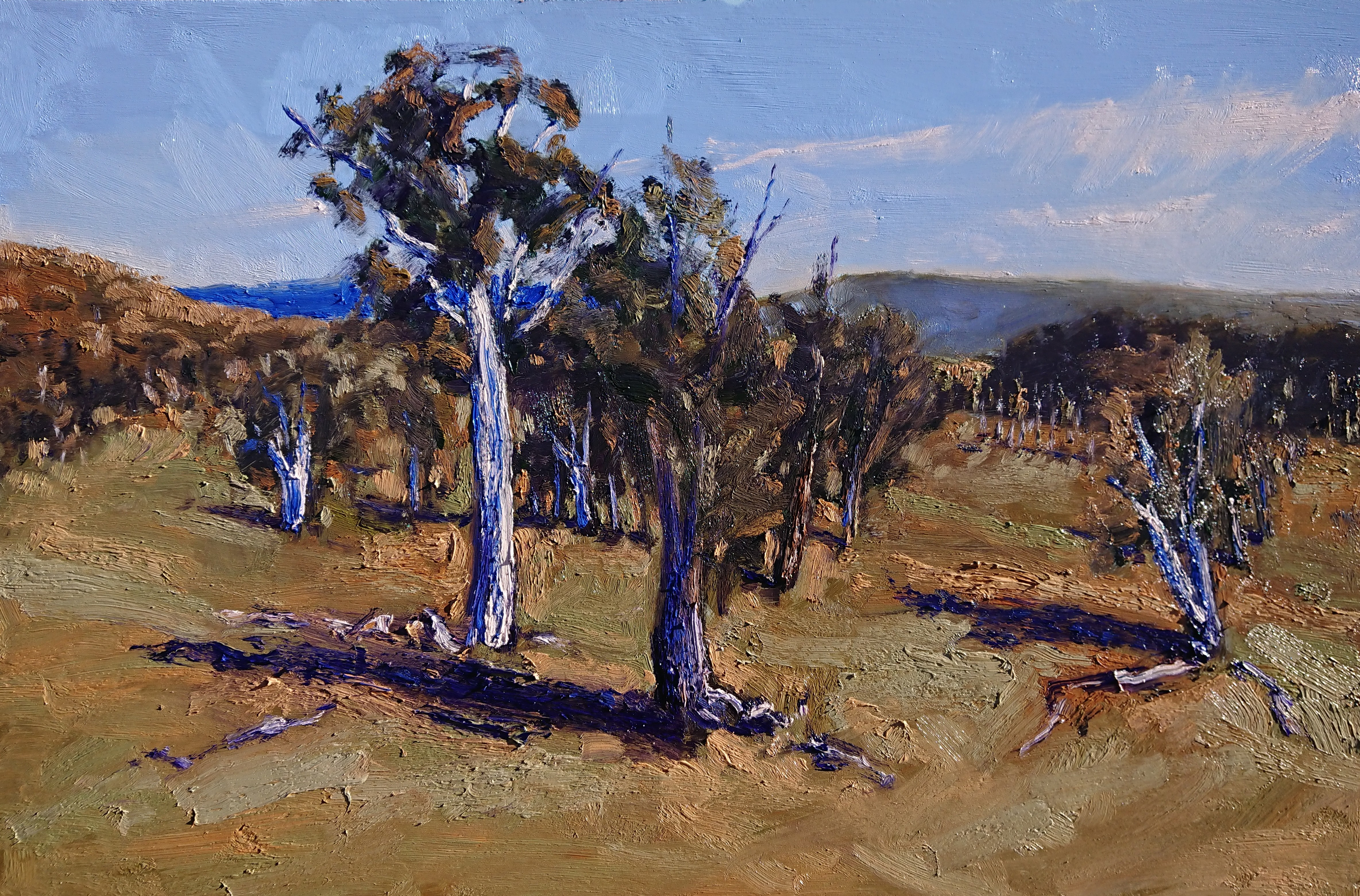 Slight breeze on a crisp winter's day_60 x 90 cm, oil on board