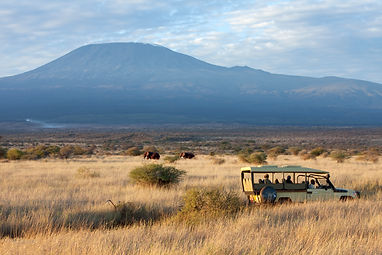 Game Drive and Game.jpg