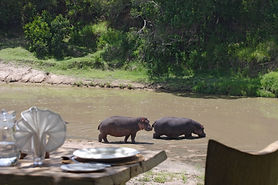 Lunch by Hippo Pool, Main Naibor.jpg