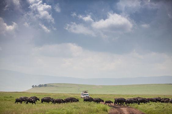 Ngorongoro Tz holiday bazaar